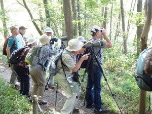 野鳥観察会(21世紀の森と広場)