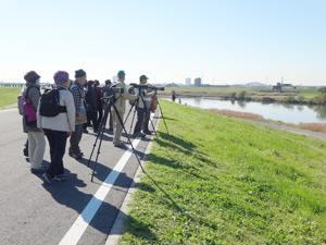 野鳥観察会(江戸川主水)
