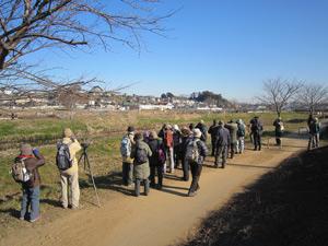 野鳥観察会(国分川)