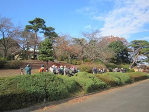 野鳥観察会(八柱霊園)