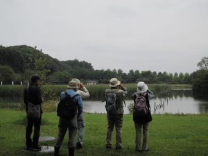平成28年度第1回「野鳥観察会」