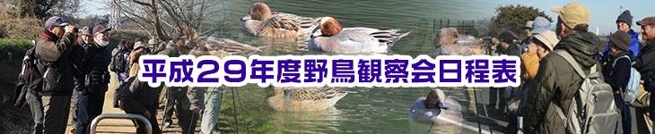 平成29年度野鳥観察会日程表