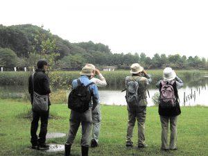 平成29年度第1回野鳥観察会
