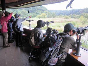 平成29年度第1回「野鳥観察会」