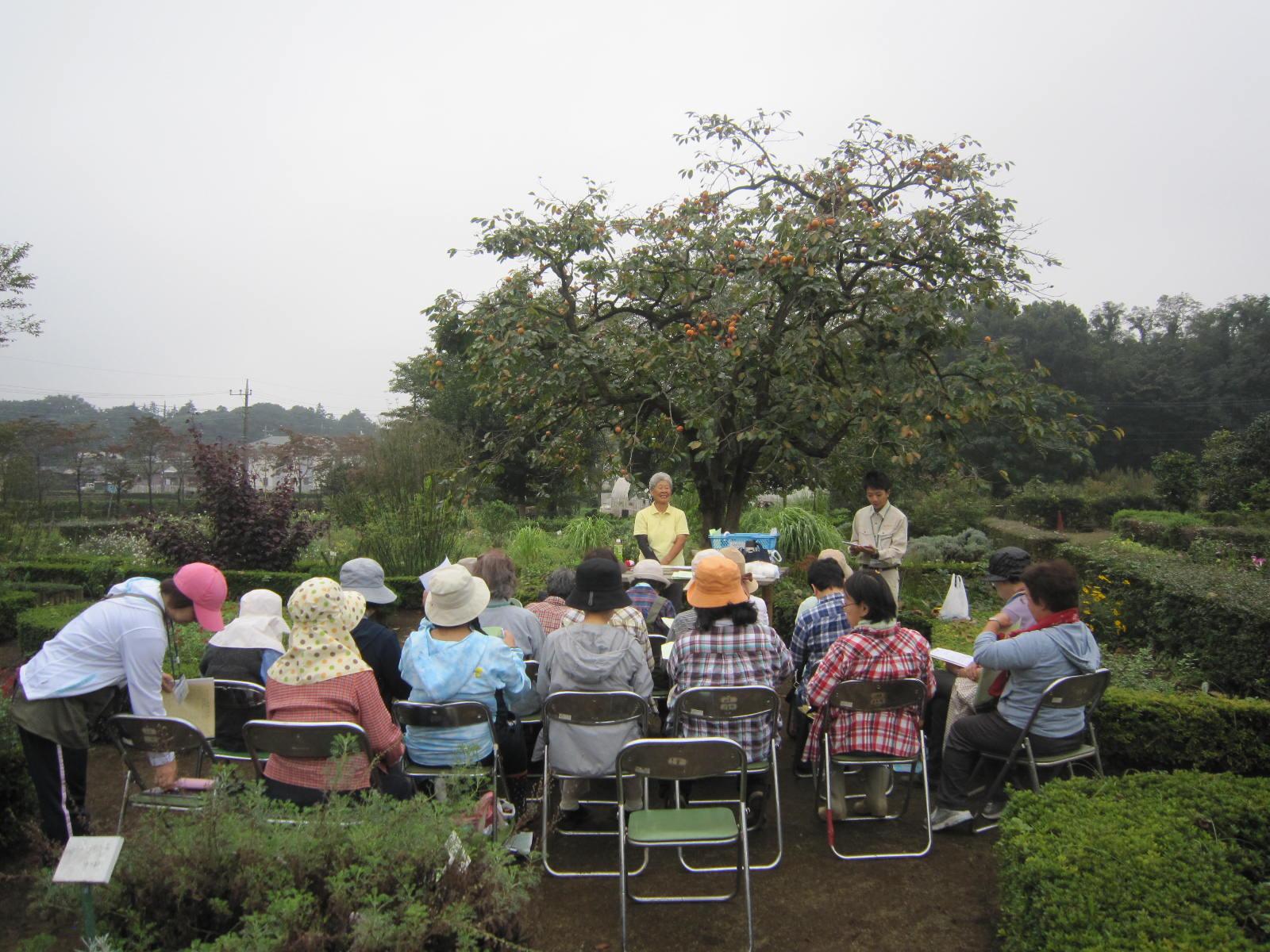 ハーブボランティア講習会