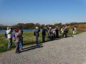 第2回野鳥観察会開催のお知らせ