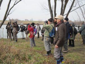 ふれあい松戸川野鳥観察会開催結果について