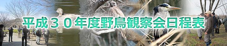 平成30年度野鳥観察会日程表