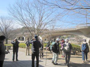 平成30年度第1回野鳥観察会