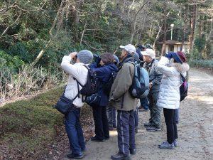 平成30年度第5回野鳥観察会
