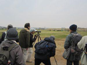 第6回野鳥観察会開催結果