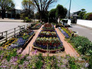 二十世紀が丘町会花づくり部
