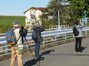 第2回「野鳥観察会」開催結果