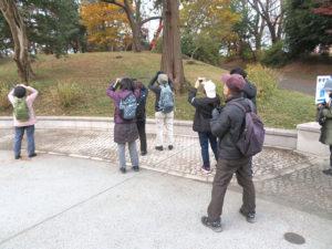 第3回野鳥観察会